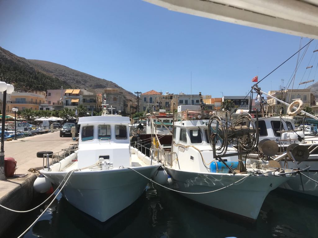 Manias sea food tavern Kalymnos - Daily catch