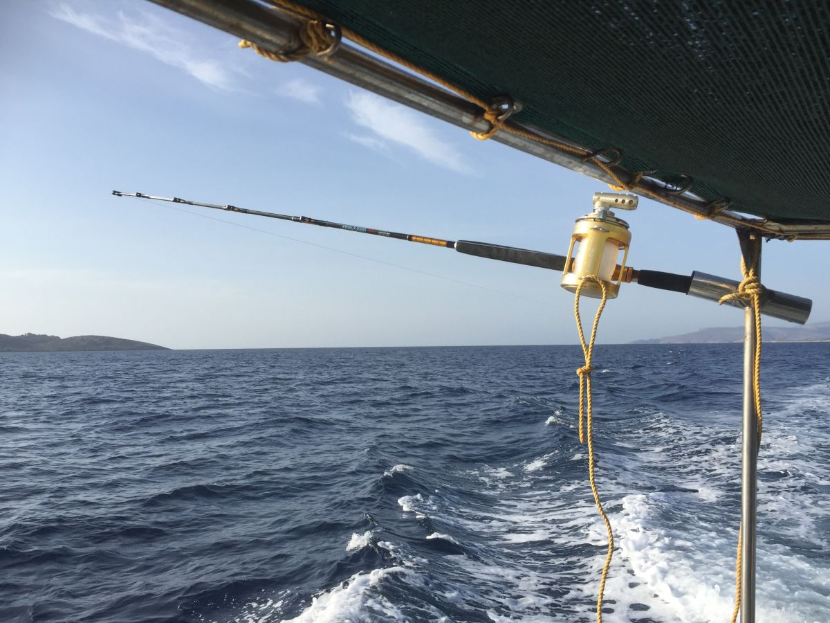 Kalymnos daily fishing cruises